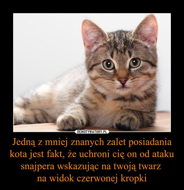Jedną z mniej znanych zalet posiadania kota jest fakt, że uchroni cię on od ataku snajpera wskazując na twoją twarz na widok czerwonej kropki –