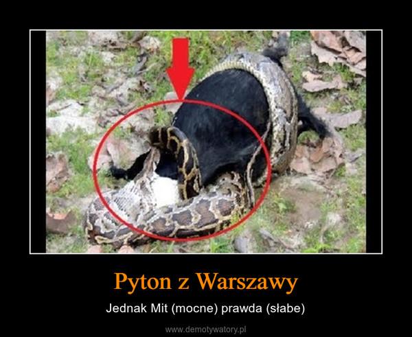 Pyton z Warszawy – Jednak Mit (mocne) prawda (słabe)