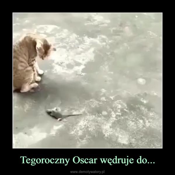 Tegoroczny Oscar wędruje do... –